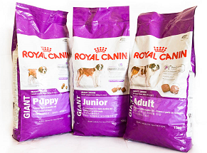 Royal Canin Giant Image