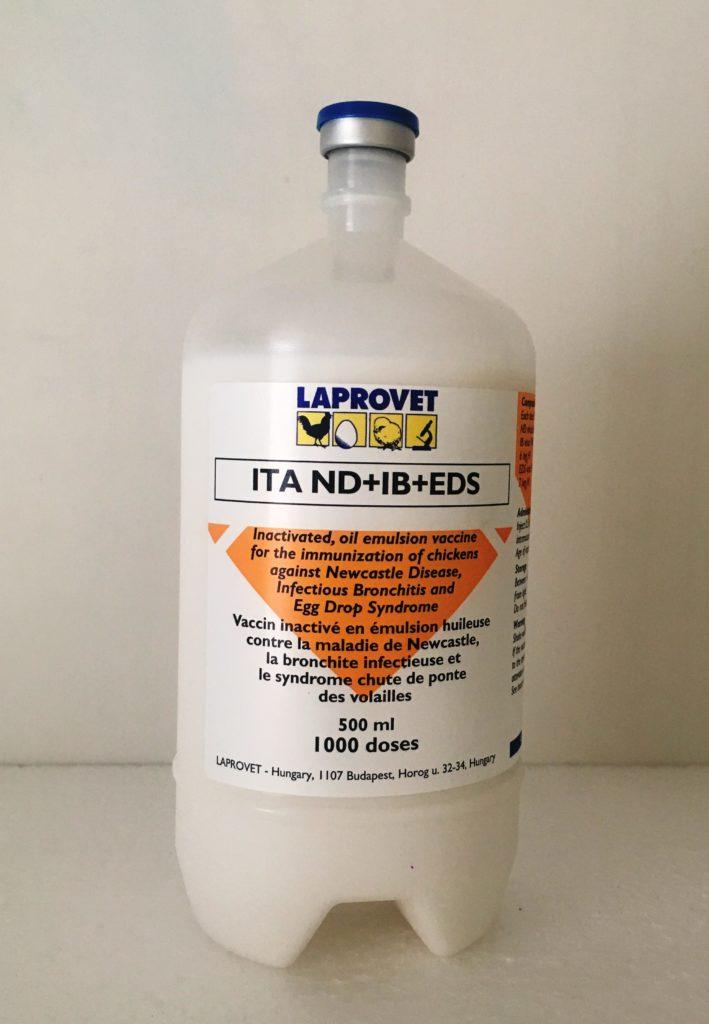 ITA ND+IB+EDS Image